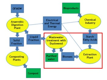 Example of integrated biorefinery